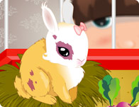 Click Here to Play Bunny Buddy!