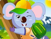 Cool Koala