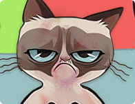 Grumpy Cat Injured