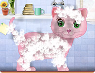 Kitty Grooming Salon 2