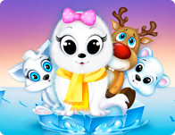 Pet Spa Salon North Pole