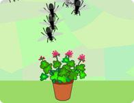 Planting Frenzy