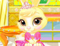 Princess Pet Salon