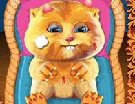 Talking Ginger Care