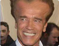 Warp Arnold